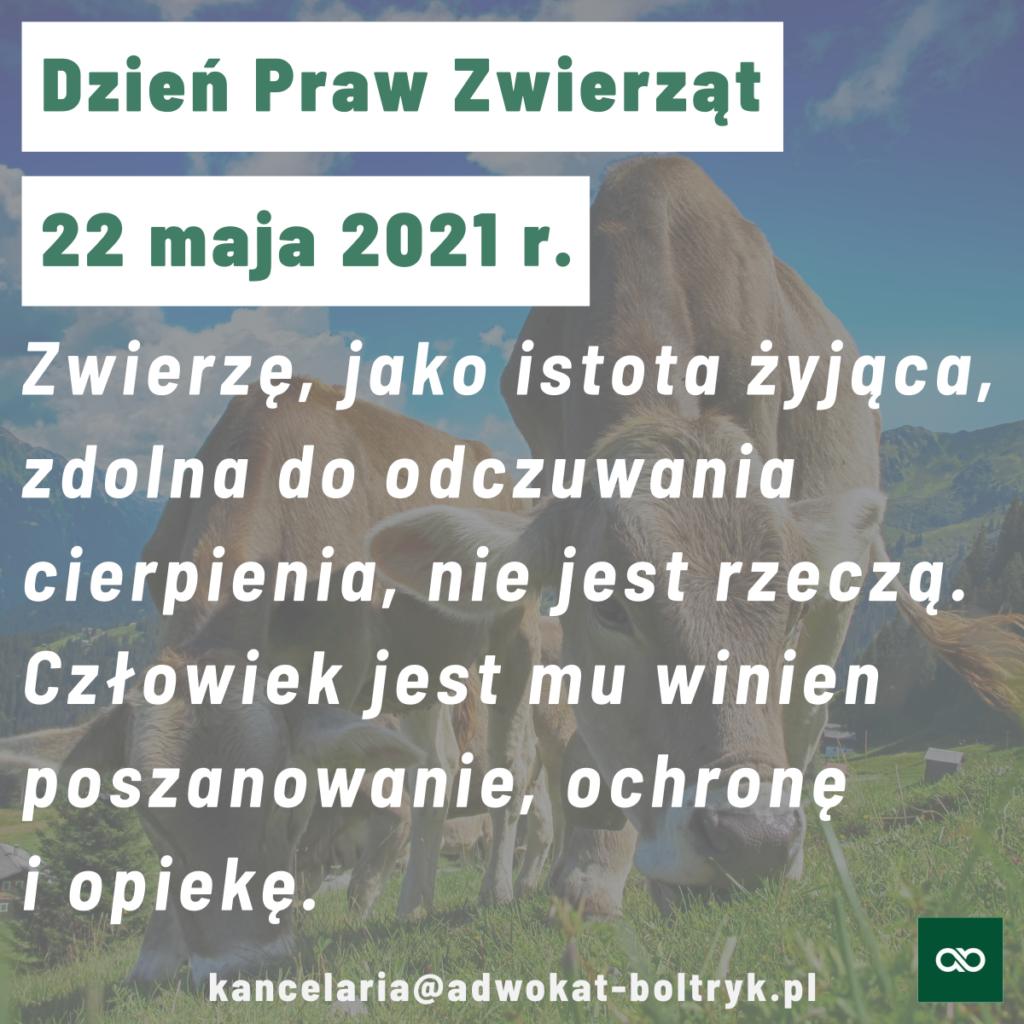 Dzień Praw Zwierząt 2021
